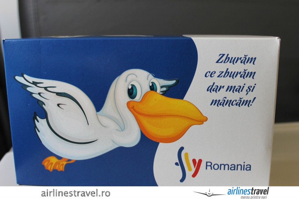 Bucuresti_Tulcea_Fly_Romania_115