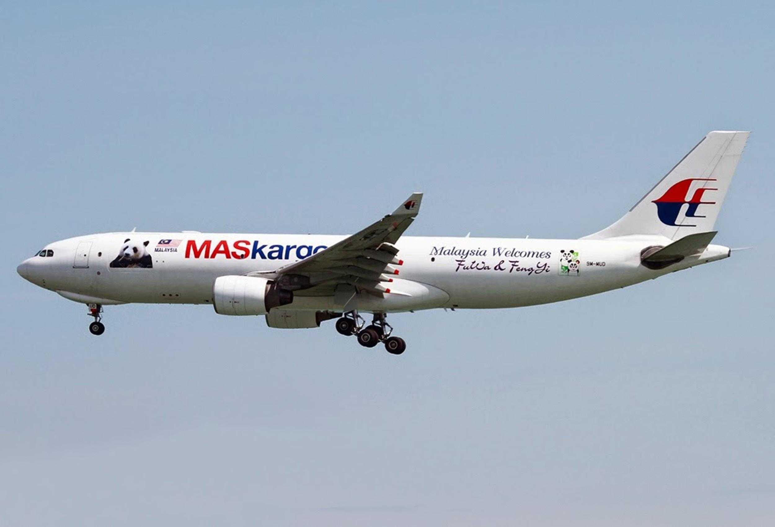 A330_Malaisian_special_panda_livery