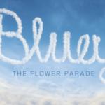 Bluey mascota KLM