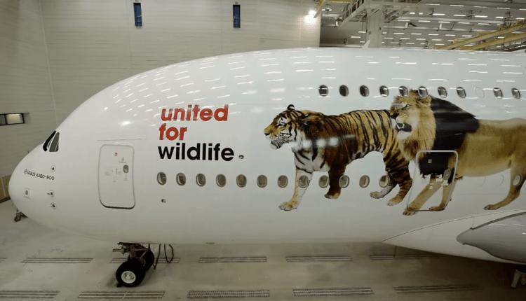 (Video) United for Wildlife / Stop traficului ilegal de animale sălbatice – campanie susţinută de Emirates
