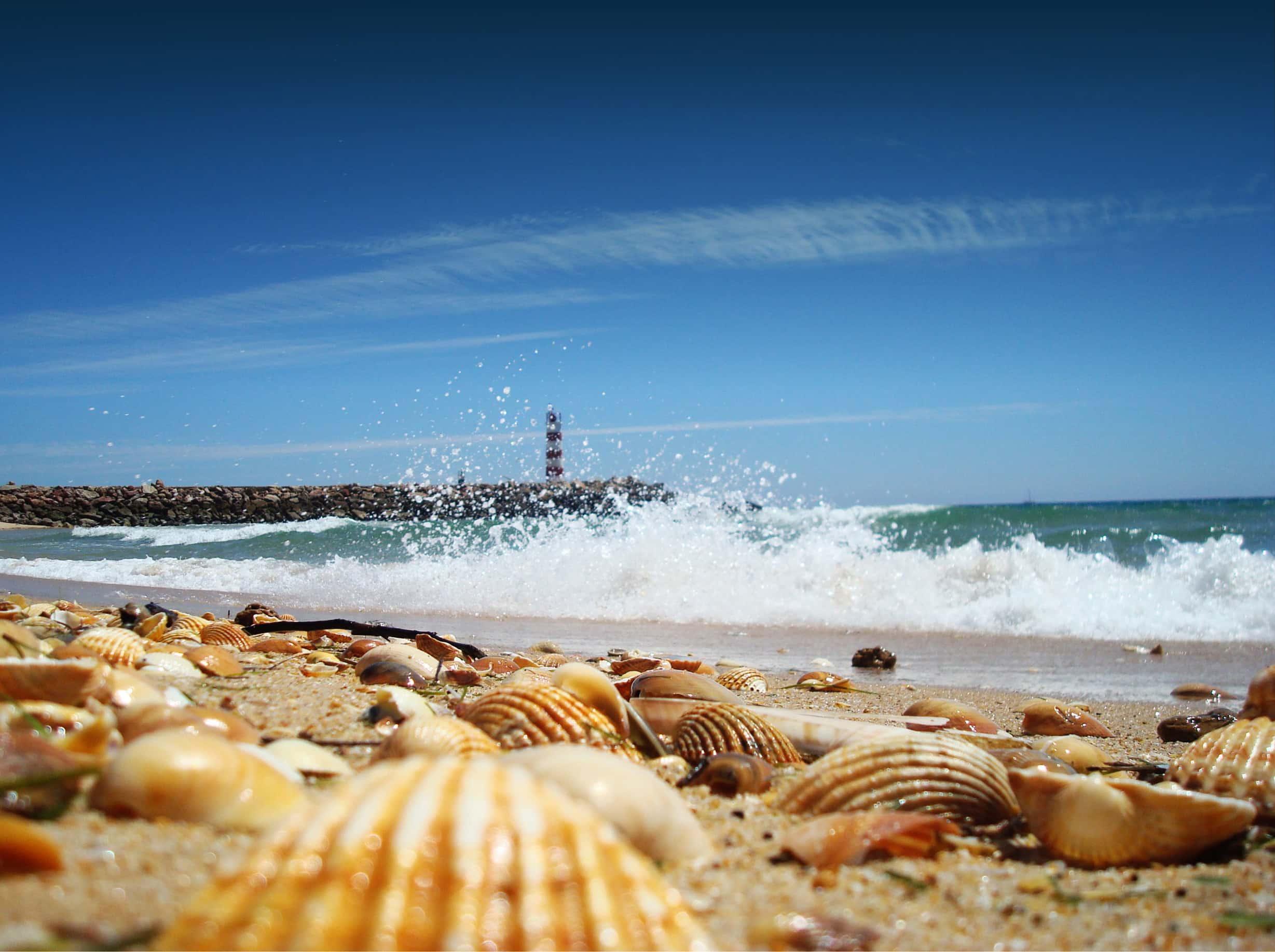 Faro Algarve Portugalia