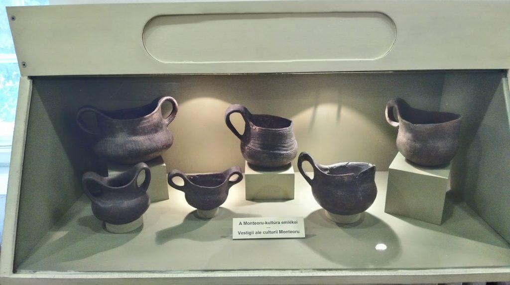 muzeul-national-secuiesc-7