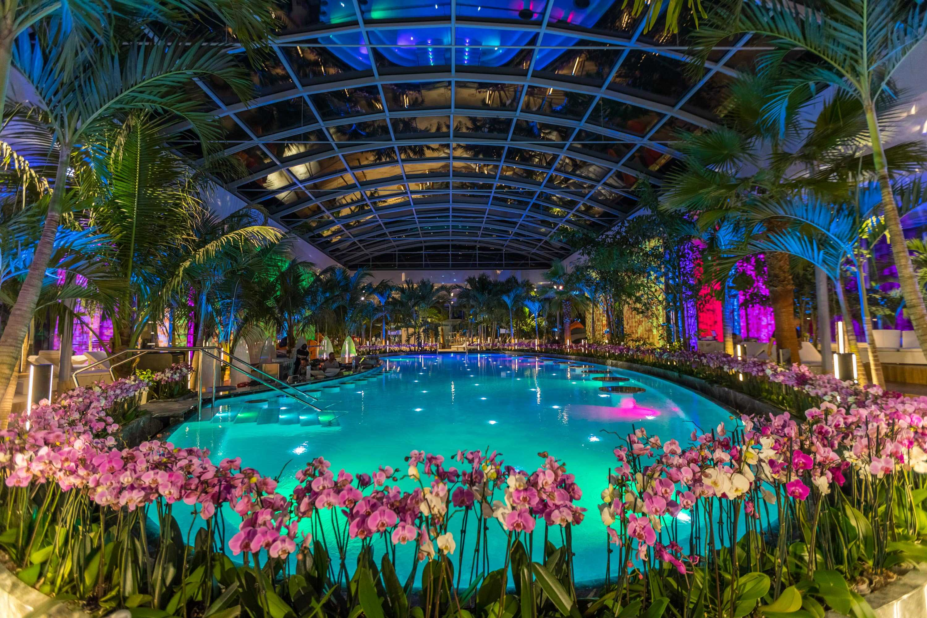 10 Things To Know About Therme Bucharest