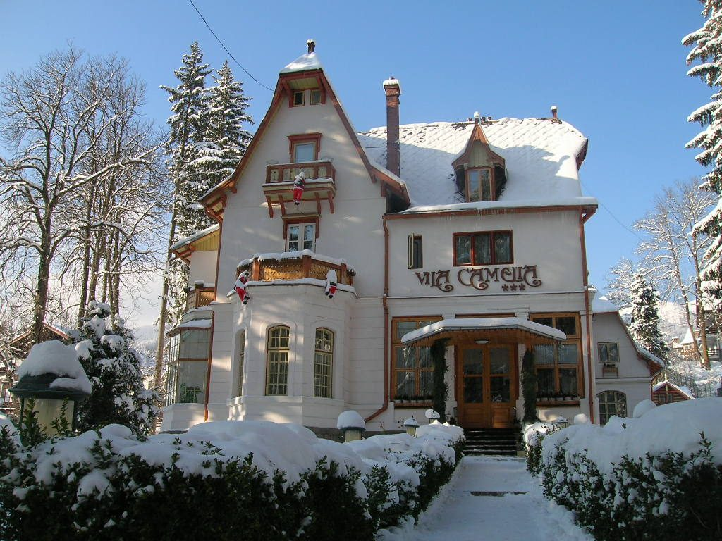 vila-camelia-iarna