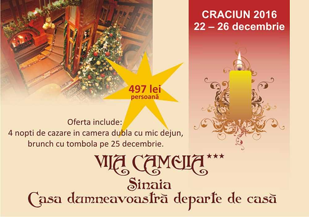 ofrecer-Navidad-villa-Camelia
