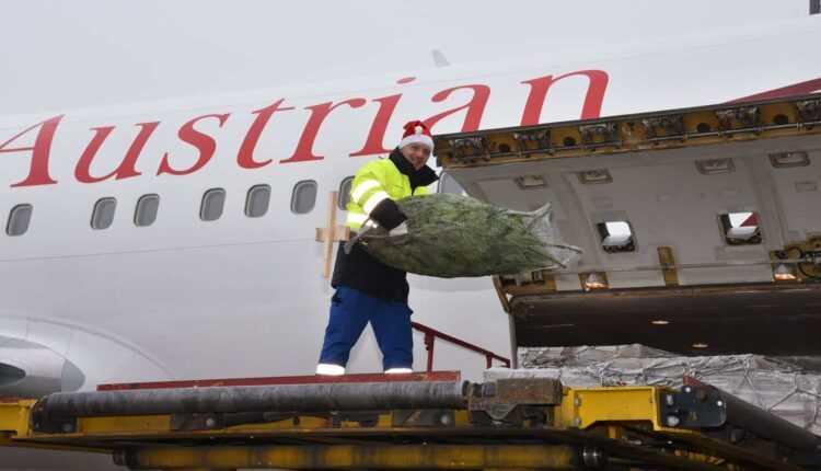 Austrian Airlines a transportat 2000 de tone de cadouri și 246 de brazi