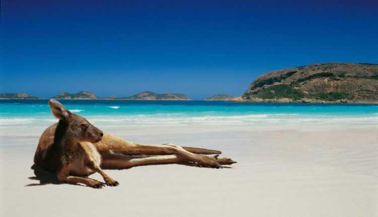 Bilete de avion ieftine spre Australia: Melbourne, Brisbane și Sydney