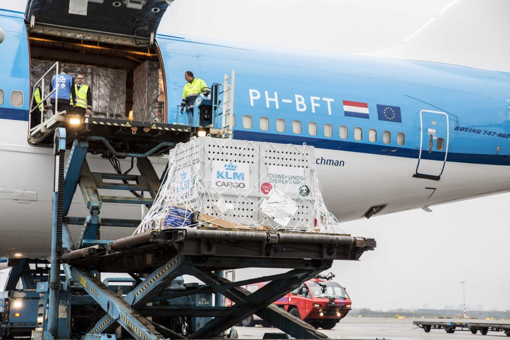 Boeing 747-400-KLM-Panda