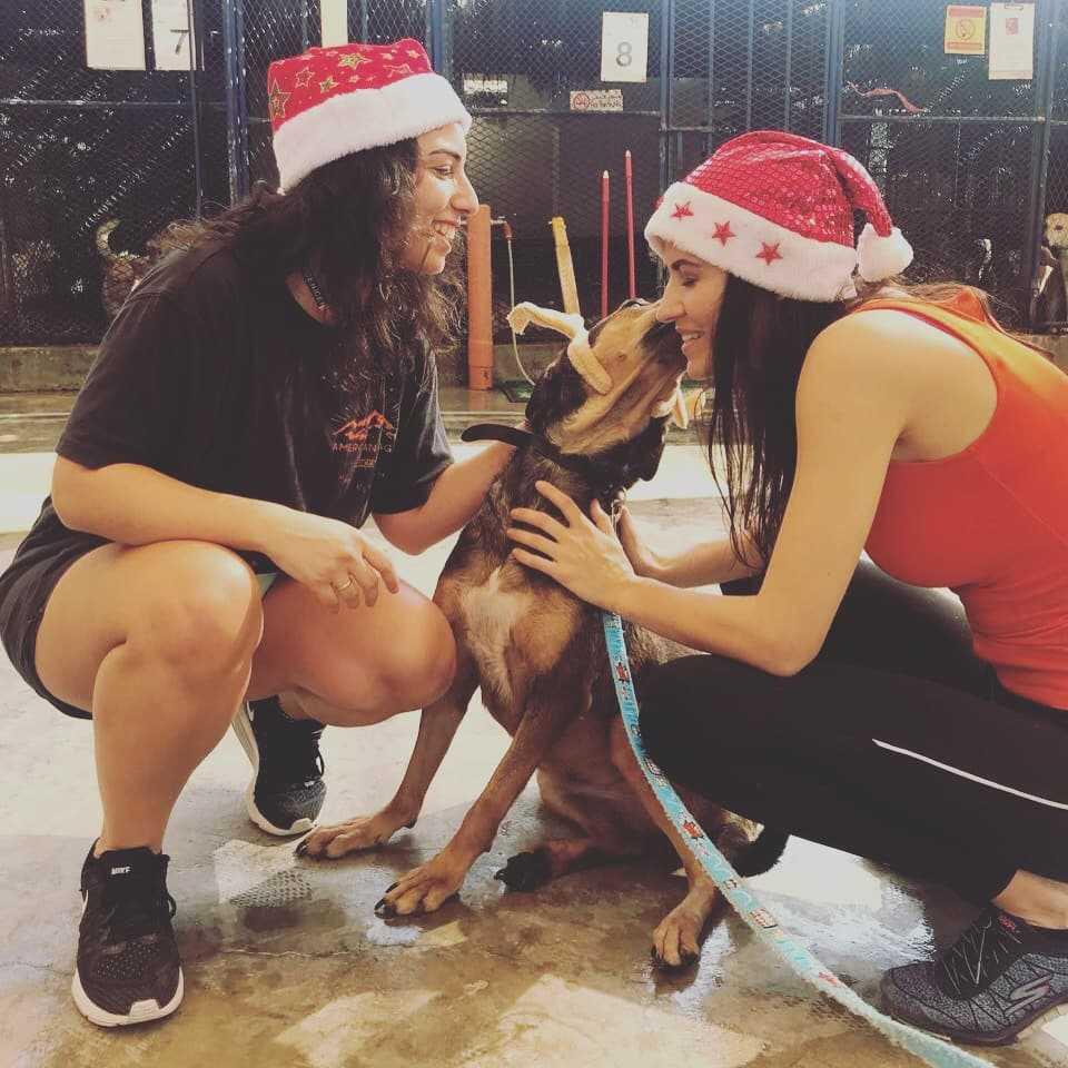 Valeria maria-shelter-dogs