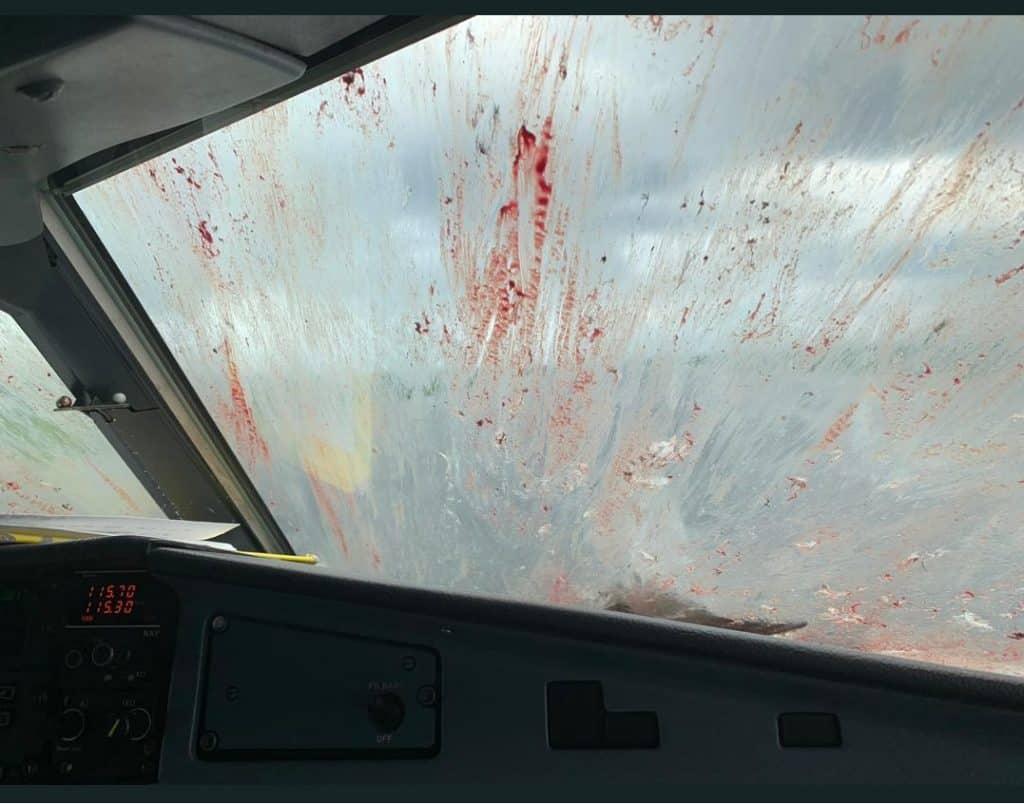 kuş çarpması hassasiyetli hava ATR-72-500-cam
