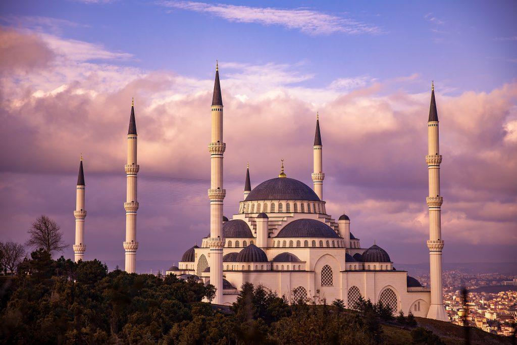 sagetor - istanbul